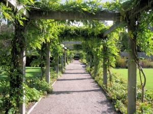 Pergole uczynią ogród piękniejszym