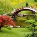 Ogrodowy minimalizm w najlepszym wydaniu
