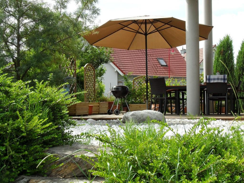 ogród, parasol, taras