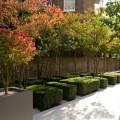 Jakie donice wybrać do nowocześnie urządzonego ogrodu?