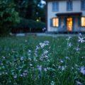 Jak stworzyć ogród w stylu angielskim?