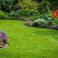 Projektowanie ogrodu – nie działaj na własną rękę, zaufaj specjalistom