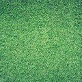 W jakich miejscach warto wykorzystać sztuczną trawę?